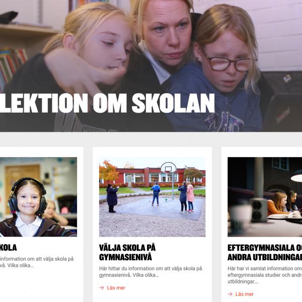 Skärmdump från enlektionomskolan.se