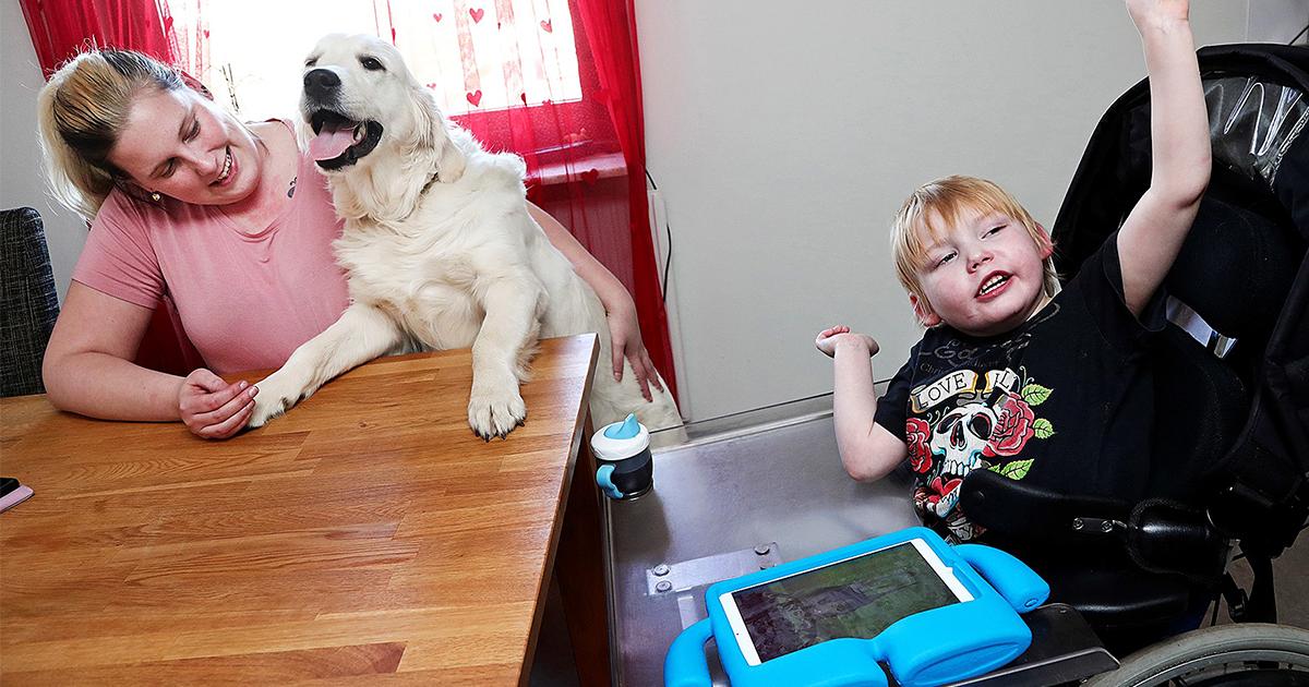 Kvinna, hund med vit päls och pojke i rullstol sitter vid köksbord.